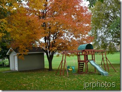jprphotos_morning_fall
